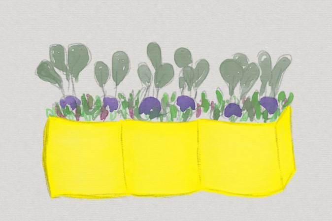 Bepflanzung im Frühling planen