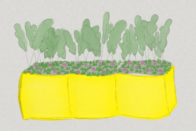 Bepflanzung planen