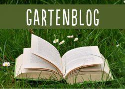 Subbanner_Web_Blog